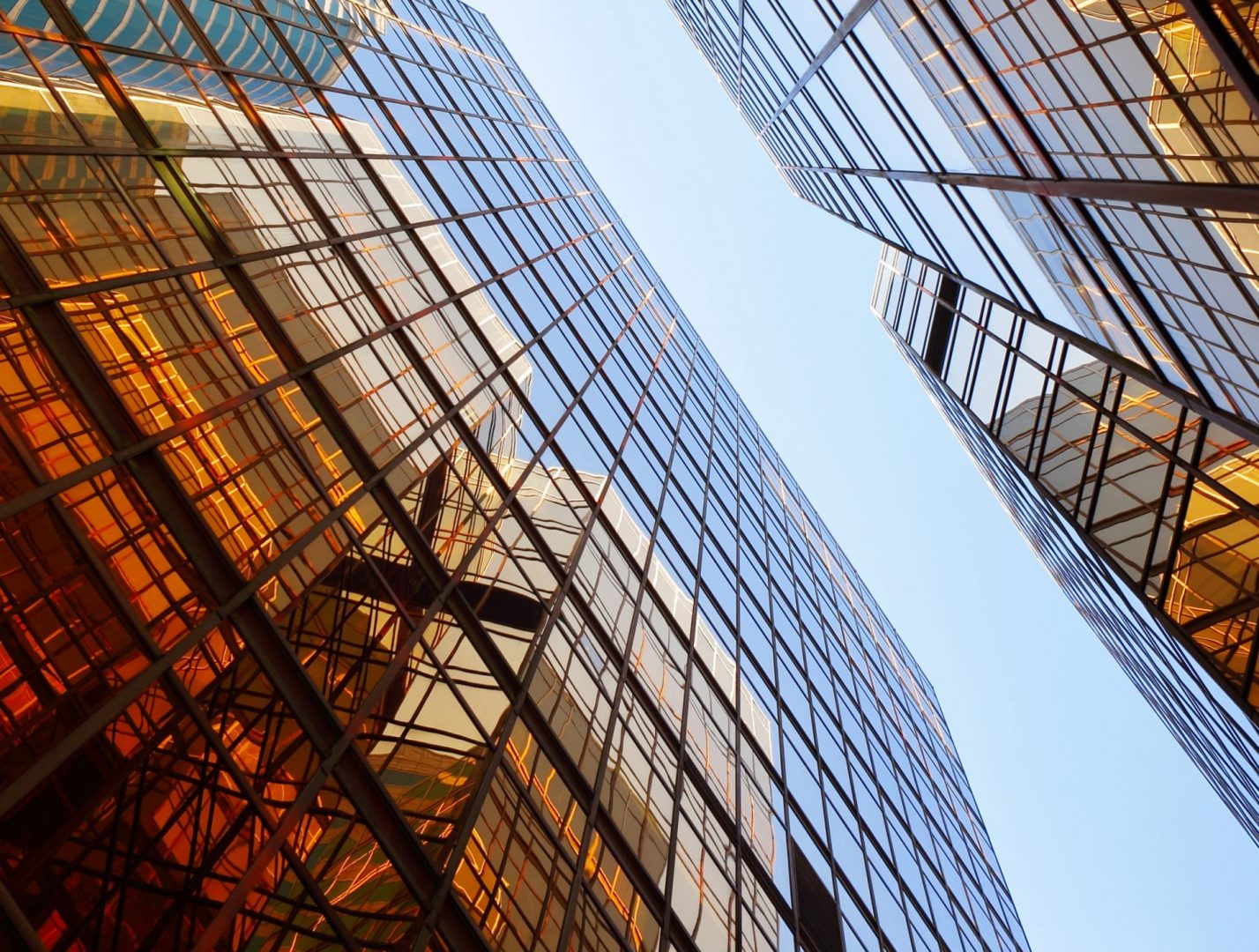 PV Curate to Accumulate - modern glass buildings